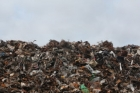Ancheta uriașă: un cosciug COVID a fost gasit la o groapa de gunoi de la marginea Capitalei