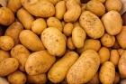 Daea, intrebat despre preturile mari la cartofi: Sunt de anul trecut si exista costuri de depozitare