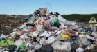 Legăturile dintre mafia italiană și piața deșeurilor din România