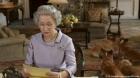 """Prefectul Brăilei: """"Dacă tulpina din Marea Britanie trăiește cât Regina, am pus-o!"""""""