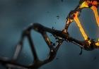 Premieră stiintifică: S-a demonstrat că ADN-ul poate fi colectat și din aer!