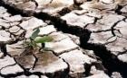 Prognoza meteo: Vine o vară de coşmar. Ce temperaturi ne aşteaptă şi ce regiuni vor fi pârjolite de secetă