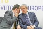 PSD e de parere ca PNL și USR au renăscut fascismul în România