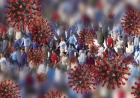 Serviciile de informații din SUA: Pandemia de Covid va avea un impact devastator în întreaga lume pe termen lung
