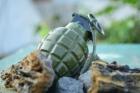 Trupele speciale din Germania au intervenit pentru o jucarie sexuala din cauciuc in forma de grenada