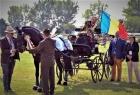 Un armăsar din cadru Romsilva, Campion Mondial! Titlul i-a fost acordat în Ungaria