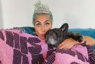 Un bărbat l-a împuşcat pe cel care a scos la plimbare câinii lui Lady Gaga și a furat animalele!