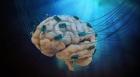 Un implant cerebral prmite unui barbat paralizat sa isi miste mâinile prin intermediul gandurilor
