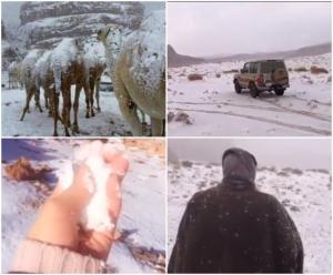 A nins in desertul Arabiei Saudite