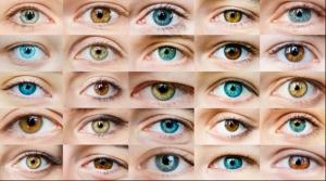 Aplicaţie pe telefon care depistează rapid virusul SARS-CoV- 2 prin scanarea ochilor. Va fi folosita la concerte, mall-uri, meciuri de fotbal