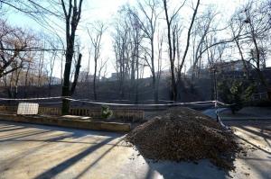 Firea, dovedită cu acte că a minţit: Proiectul patinoarului din Parcul Romniceanu a fost publicat în SEAP