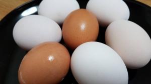 Milioane de ouă au fost retrase de pe piaţă din cauza unei epidemii de salmonella