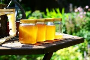 România importă miere contrafăcută și exportă miere de calitate în vrac: