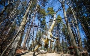 Un dinozaur diplodocus cât un bloc cu patru etaje a apărut în pădurea de la Râşnov