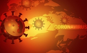 """Au fost descoperite primele """"rude"""" ale virusului SARS-CoV-2"""