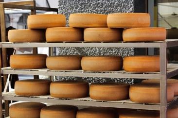Importurile de produse lactate sunt la cote alarmante. Ce fac procesatorii interni?