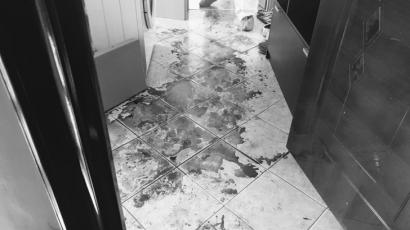 Crima teribila la Timisoara. Un tanar si-a ucis sotia, apoi a incercat sa se omoare si a intrat cu masina, cu toata viteza, intr-un stalp