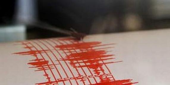 Cutremur puternic, de 7,9 grade, cu alertă de tsunami