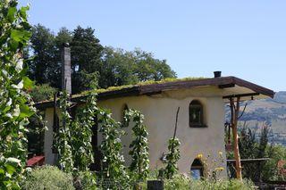 Doi fraţi din Bistriţa au construit o locuinţă unicat, din lemn, paie şi muşchi de copac, care atrage turiştii din toate colţurile lumii