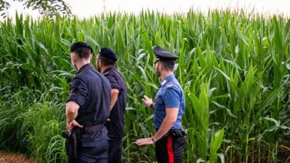 Două tinere ucise în lanul de porumb, strivite de o combină agricolă. Una din ele a apucat să sune la 112