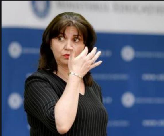 Finul Monicai Anisie, acuzat penal de campanie ilegala și calomnioasă