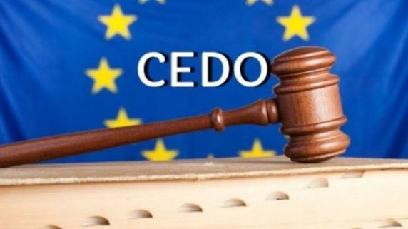 Fost judecator CCR, numit agent guvernamental la CEDO