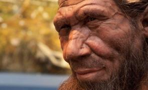 Imperecherea dintre primii oameni din Europa şi cei de Neanderthal era mult mai frecventă decat se credea