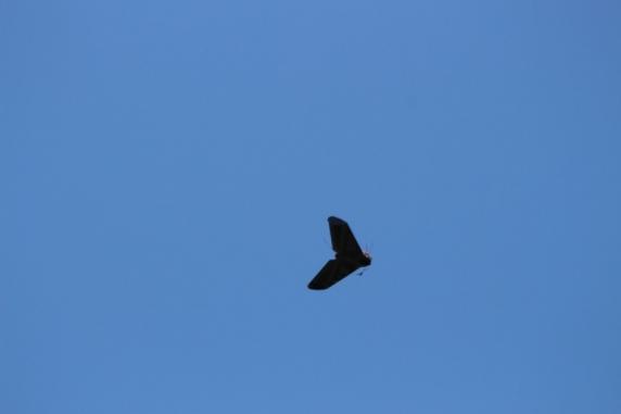 Lansare în stratosferă a unui avion fără pilot din Poligonul Capu Midia