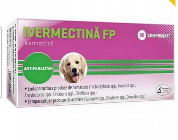 Medici: Pastilele pentru râia câinilor nu sunt preventive pentru COVID-19!