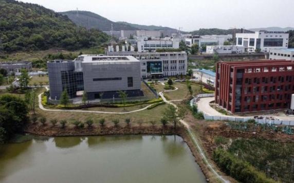"""Noi documente arată că Institutul de la Wuhan a făcut experimente cu coronavirusuri pe şoareci """"umanizaţi"""" ce puteau infecta oamenii"""