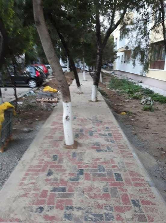 Robert Negoită ii crede betivi pe locuitorii Sectorului 3 facandu-le trotuare serpuite printre pomi