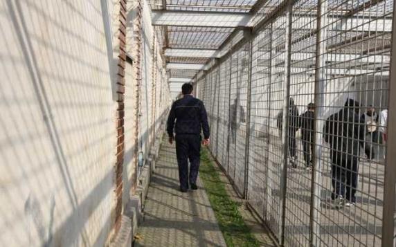 """Sex şi escrocherii la Penitenciarul Vaslui. Directorul: """"Sunt date confidenţiale"""""""