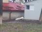 Cadavrul unei femei a zacut doua ore fara sa il vada nimeni in curtea celui mai mare spital din Botosani