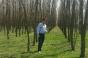 """Fermier amendat după ce a plantat 40.000 de arbori: """"Nu e vorba de bani! Mie nu mi-e frică!"""""""