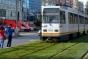 Gazon pentru linia de tramvaie. Primăria Sectorului 5 a cumpărat cu 41 de euro iarbă de 2,5 euro!