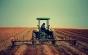 Mari companii arabe, dispuse să investească o jumătate de miliard de dolari în agricultură. Ce terenuri i-au atras în România