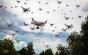 """Misterul roiurilor de drone care au dispărut brusc după ce au atacat state din SUA: """"Erau cu adevărat sinistre!"""""""