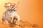 Moise Guran, despre Codul Fiscal: Isărescu NU are dreptate