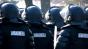 Percheziții la mafia peștelui din România, Italia, Spania, Franţa şi Ungaria. S-a descins la peste 150 de locuințe