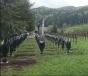 Percheziții în județele Bacău și Harghita, legate de acoperirea crucilor din Cimitirul Valea Uzului