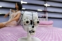 Primul bordel cu roboți sexuali din lume nu se va mai deschide