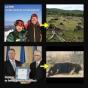 PSD îl indică pe Klaus Iohannis drept vinovat pentru uciderea ursului Arthur