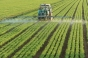PSD pentru agricultura: 8 miliarde de euro subventii si 1,4 milioane de hectare irigate gratuit
