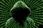 SUA restrictioneaza exportul de software pentru inteligenta artificiala