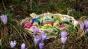 Tot mai mulţi români stau acasă de Paşte pentru că vacanţele sunt scumpe