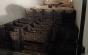 Traficanţii de trufe au încasat o dură lovitură. Un italian a pierdut o avere în România