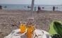 Turiştii se plâng de invazia buburuzelor pe litoral. Explicaţiile specialiştilor asupra acestui fenomen