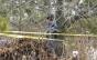 Un băiat de 15 ani cu dizabilități, din Bacău, a fost dezbrăcat, băgat în portbagaj și abandonat în pădure