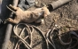 """Un căţeluş căzut într-un puţ adânc de 27 de metri, salvat în ultimul moment. """"A avut puterea să dea din codiţă, în semn de mulţumire"""""""