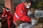 Un milion de măști sanitare achiziționate de Crucea Roșie din donațiile companiilor energetice se află deja în depozite